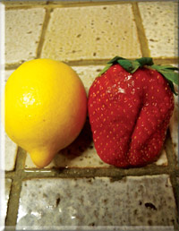 The lemon size strawberries